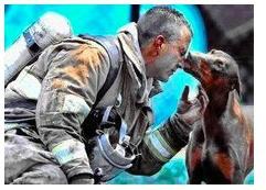 她怀着身孕,消防员从一场大火中救出了她,接着又冲进了熊熊烈火,火灭了,消防员累得瘫坐地上喘息,她向消防员走去。当记者夏洛特按下快门时,她亲吻了他!.jpg