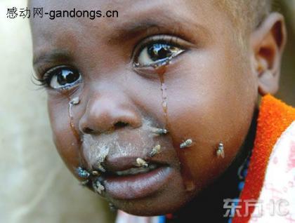 贫穷,恐惧...小孩子脸上的苍蝇。。说明了他快死了.jpg